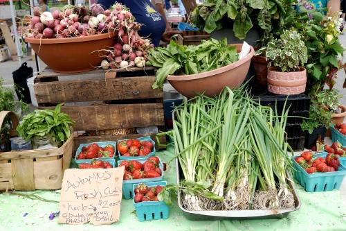 SOWA Farmers Market