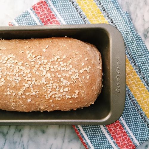 100% Whole Wheat Honey Oat Bread