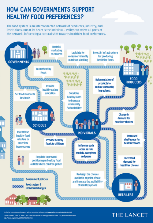 Obesity & Food Policy Infographic